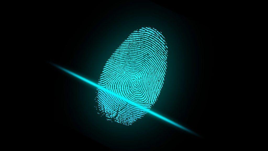 T.E. quiere digitalizar proceso de recolección de firmas para torneo electoral de 2024